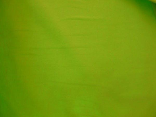 Plain green cotton jersey