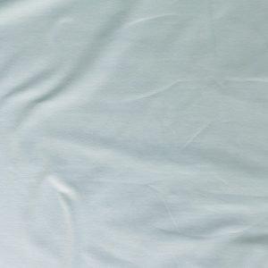 t-shirt weight jersey fabric - Duck egg blue