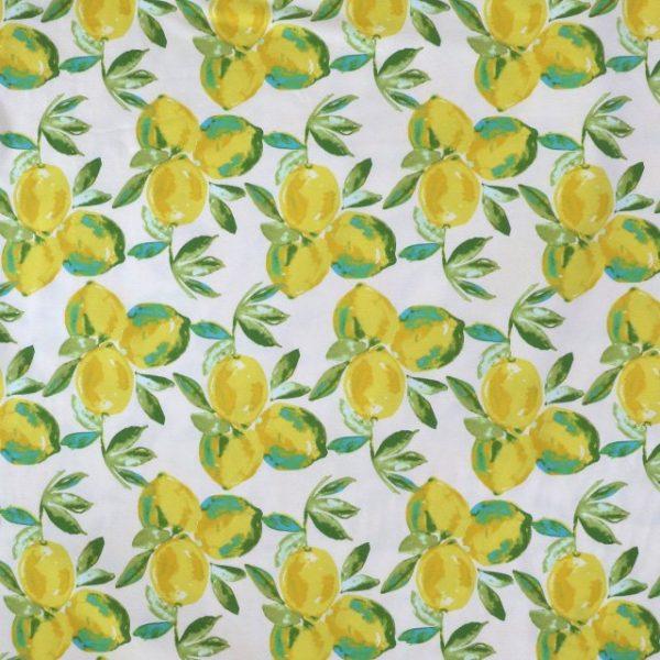 jersey fabric - Sage Yuma Lemons Mist