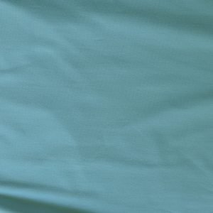 t-shirt weight jersey fabric - Pale teal